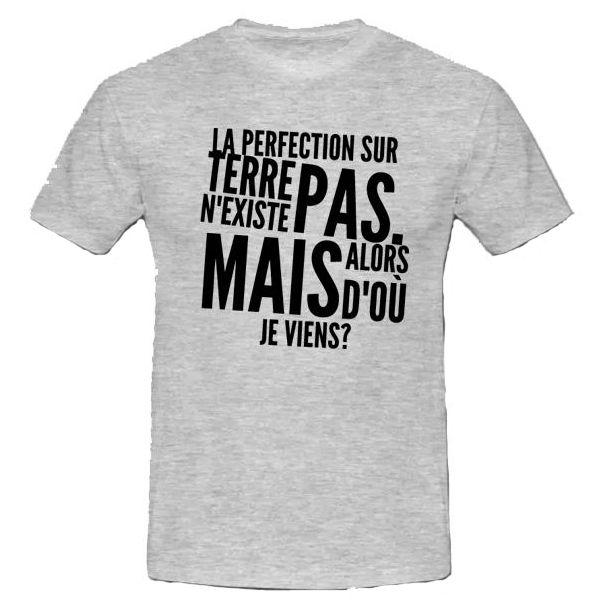 T shirt la perfection sur terre n 39 existe pas mais alors d 39 o je viens boutique swaagshirt - Faire tee shirt personnalise ...