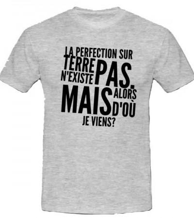 T-shirt la perfection sur terre n'existe pas, mais alors d'où je viens?